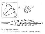 Для сердцевины ромашки можно взять шерсть, шелк, а лучше всего ирис.  Делают ее так: берут карандаш и к нему
